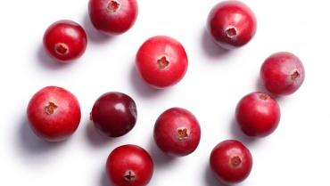 Schisandra Chinensis: Super Food ή Super Beauty Ingredient;
